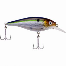 Artificiali Berkley Flicker Shad Shallow 7 Cm  Blue Smelt
